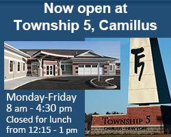 Township 5 in Camillus